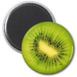 Fruit Magnet Series -Kiwi-