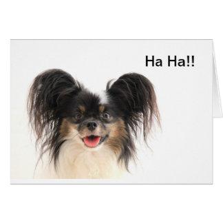 Funny Dog, Ha ha, You're Old Birthday Card