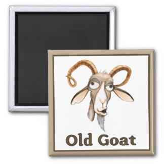 Funny Old Goat Square Magnet