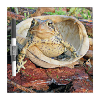 Funny TOADLY SEXY Toad Dry Erase Whiteboards