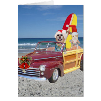Funny Yellow Lab & Cat Surfer Christmas Greeting Card