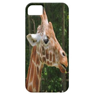 G iPhone 5 CASES