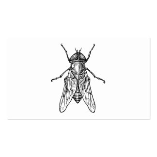 Gadfly Pack Of Standard Business Cards