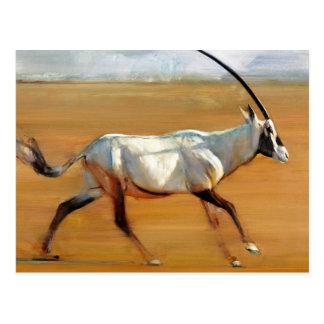 Galloping Oryx 2010 Postcard