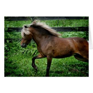 Galloping Pony Greeting Card