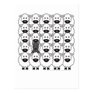 German Shepherd Dog in the Sheep Postcard