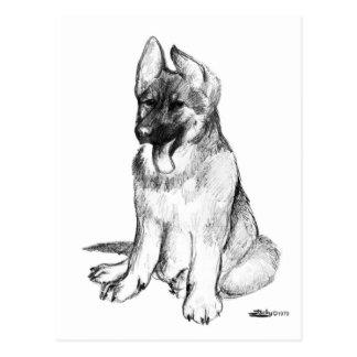 German Shepherd Puppy Postcard