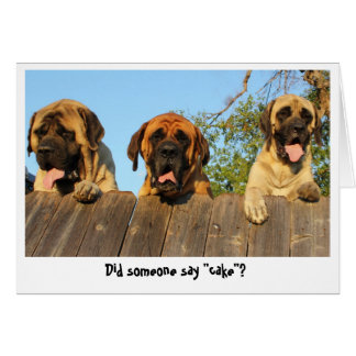 Giant Dogs peering over the fence birthday card