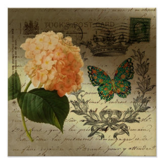 girly Hydrangea  butterfly vintage paris Poster