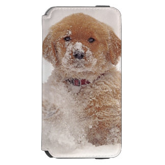Golden Retriever Pup in Snow Incipio Watson™ iPhone 6 Wallet Case