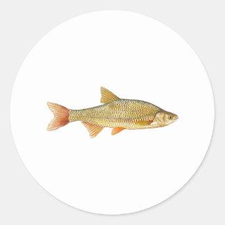 Golden Shiner Logo Round Sticker