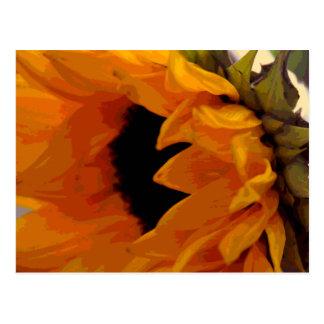 Golden Sunflower Postcard