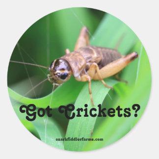 Got Crickets Round Sticker