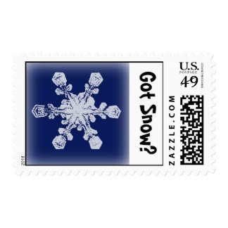 Got Snow? 1 Stamp