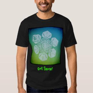 Got Snow? 1 Tshirt