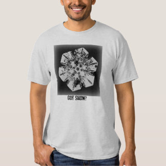 Got Snow? 2 Tshirt