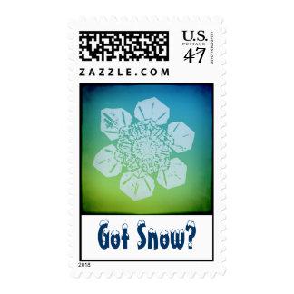 Got Snow? 5 Stamp