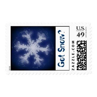 Got Snow? 6 Stamp