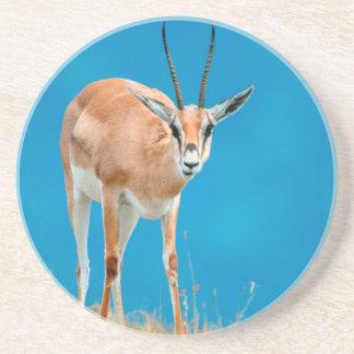 Grant's Gazelle (Gazella Granti) Ewe Portrait Coasters