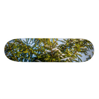 Green Christmas Tree In Snow Skate Board