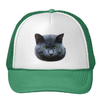 Green Eyed Cat Hat