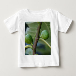 Green fruits of a common fig  tree t shirt