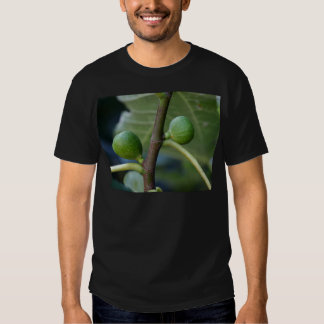 Green fruits of a common fig  tree t shirts