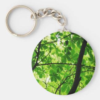 Green Leaf Sky Basic Round Button Key Ring