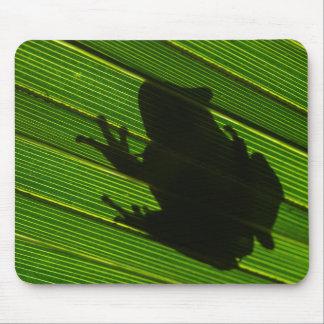 Green Tree Frog (Hyla cinerea) 1 Mouse Pad