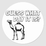Guess What Day it Is? Hump Day Camel Round Sticker
