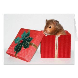 Hamster Christmas gift Greeting Card