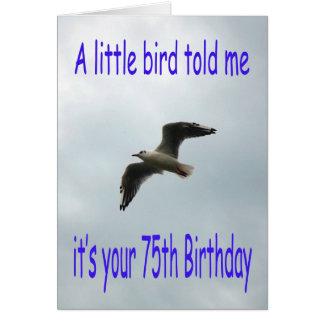 Happy 75th Birthday Flying Seagull bird Greeting Card
