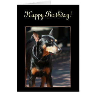 Happy Birthday Miniature Pinscher greeting card