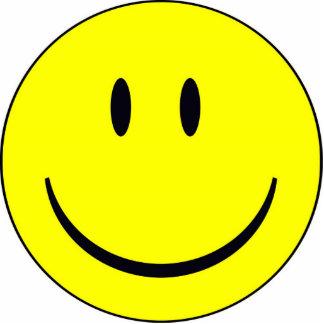 happy-face_happyface_smiley standing photo sculpture