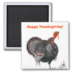 Happy Thanksgiving Vintage Turkey Drawing Square Magnet