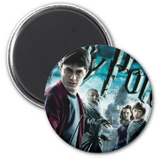 Harry Potter With Dumbledore Ron and Hermione 1 6 Cm Round Magnet