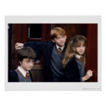 Harry, Ron, and Hermione Poster