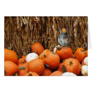Harvest Chinchilla Greeting Card