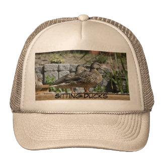 Hat: Sitting Ducks Cap