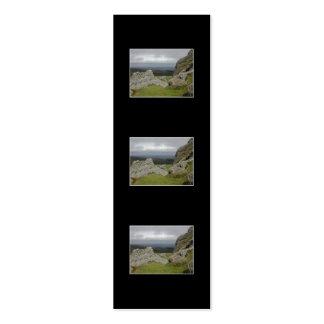 Haytor. Rocks in Devon England. Pack Of Skinny Business Cards