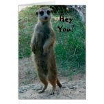 Hey You Meerkat Birthday Card