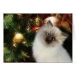 Himalayan kitty Christmas Greeting Card