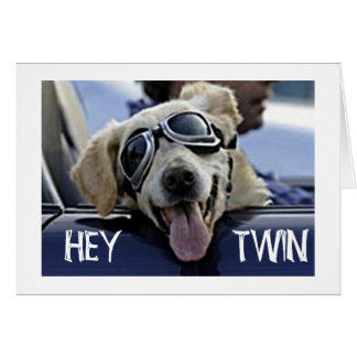 """HIP DOG SAYS HEY **TWIN** """"HAVE A HAPPY BIRTHDAY"""" GREETING CARD"""