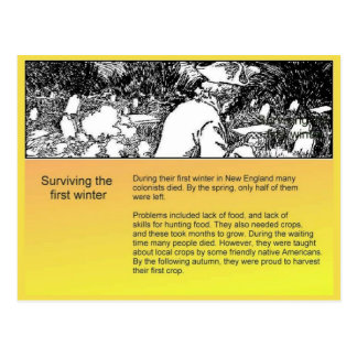 History, American settlers, Surviving the winter Postcard