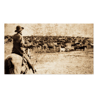 Home on the Range Pack Of Standard Business Cards