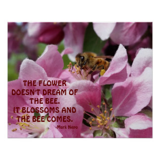 Honey Bee on Blossom with Quote