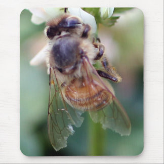 Honey Bee Pad Mouse Pad