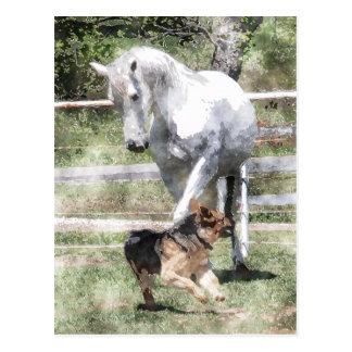 HORSE & DOG PLAY WATERCOLOR POSTCARD