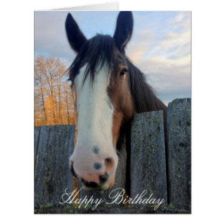 Horse head beautiful custom birthday card