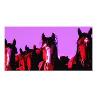 Horse - Horses Photo Greeting Card